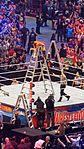 WrestleMania 32 2016-04-03 18-27-45 ILCE-6000 8941 DxO (27762680051).jpg