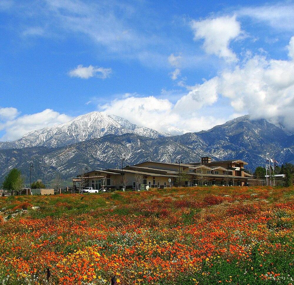 The population density of Yucaipa in California is 698.59 people per square kilometer (1809.33 / sq mi)