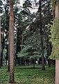 Zhukovskiy, Moscow Oblast, Russia - panoramio (38).jpg