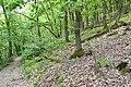 Znojmo-Popice-cesta-z-Trouznického-údolí-nahoru-na-Sealsfieldův-kámen2019b.jpg