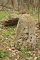 """Grčko groblje"" na potesu Lipa, selo Majdan kod Gornjeg Milanovca 02.jpg"