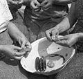 """""""Penčanje"""" češp v Biljani (rekonstrukcija po starem) 1953 (cropped).jpg"""