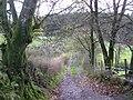 """The Well Lane"", Errigle - geograph.org.uk - 1041203.jpg"
