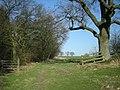 'The Jack Mytton Way' along the ridge of Wenlock Edge - geograph.org.uk - 689860.jpg