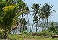 Île du diable depuis l'Île Royale.jpg