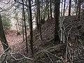 Überreste der Abschnittsbefestigung Puch 03.jpg