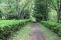 Аллея около партера. Раифский дендрарий. Зеленодольский р-н. РТ. Июль 2014 - panoramio.jpg