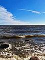 Балтийская волна - Baltic wave.jpg