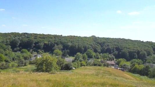 File:Вид на ліс Мазепинці зі сторони Кладовища.webm