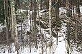 Гарупе (Латвия) Лесенка в лесу - panoramio.jpg
