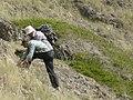 Группа Ученных-исследователей занимается разведкой горных пород4.jpg