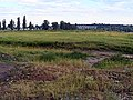 Г. Белореченск. Луга вдоль реки. Фото Виктора Белоусова. - panoramio.jpg