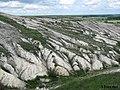 Дворічанський національний природний парк 15.jpg