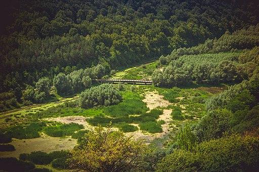 Китайгородський ліс і місток через річку