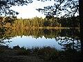 Лесное озеро IMG 4289.jpg