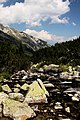 Национален парк Пирин - NP01 - локация Бандеришки езера-река Глазне No6.jpg