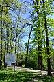Парк Нивки, західна частина. Місто Київ. Фото 3.jpg
