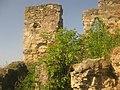 Пнів (3) замок.jpg