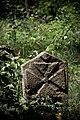 Старовинне козацьке кладовище в с. Трахтемирів (7).jpg