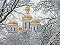 Чернігів. Куполи Катерининської церкви.JPG