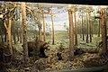 Экспозиция Лес в Мурманском краеведческом музее.JPG