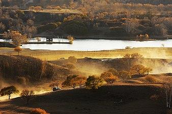 坝上 木兰围场 - panoramio - wuqiang beijing (11)