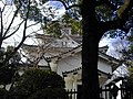 大垣城(2001-12-16) - panoramio.jpg