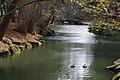 岩手公園 Iwate Park - panoramio (3).jpg