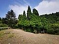 庐山景区 通往三叠泉的路上 05.jpg