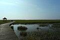 若尔盖花湖-错热洼坚Cuorewajian Lake - panoramio (3).jpg