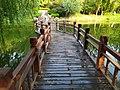 虞河上的步行漫水桥.jpg