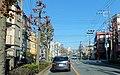 金町1丁目 - panoramio.jpg