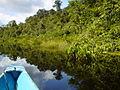 015 Amazonas TaniaFraga 16.JPG