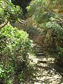 03-05-2017 Steps down to Ponta Grande cove.JPG