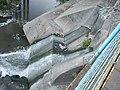 03335jfSan Jose del Monte City Bulacan Caloocan City Bridge Riverfvf 05.jpg