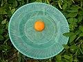 08726jfFilipino foods fruits Bulacan landmarksfvf 22.jpg