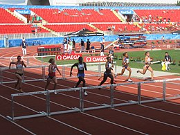 110m hurdles race w in Novi Sad.JPG