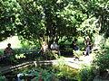 11 Zámek Veltrusy, kuchyňská zahrada.jpg