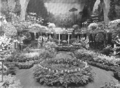 1912 Italian garden HorticulturalHall MassAve Boston USA.png