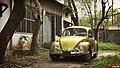 1967 Volkswagen Beetle, Bangladesh. (41113791195).jpg