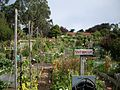 2007 community garden FtMason SanFrancisco 1332810179.jpg