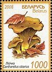 2008. Stamp of Belarus 15-2008-06-23-m737.jpg