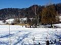 2012 'Seegfrörni' - Türlersee - Hausen am Albis 2012-02-18 12-41-24 (SX230).JPG