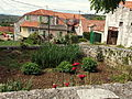 20130604 on the Island of Brač 015.jpg