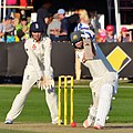 2017–18 W Ashes A v E Test 17-11-10 Perry (02).jpg