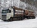 2017-12-02 (100) Volvo FH500 from Franz Gelbmann GmbH with wood near Laubenbachmühle, Frankenfels, Austria.jpg