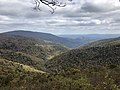 2018-10-28 13 51 21 View east from the Ivy Creek Overlook along Shenandoah National Park's Skyline Drive on the border of Greene County, Virginia and Rockingham County, Virginia.jpg