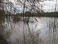 20200204Saarhochwasser05.jpg