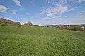 20210417 Naturschutzgebiet Wolferskopf 09.jpg