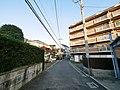 2 Chome Higashikaiganminami, Chigasaki-shi, Kanagawa-ken 253-0054, Japan - panoramio (28).jpg